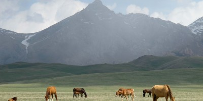 Song Kol Lake: Yurts, Horses, and Snow